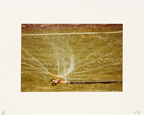 estampe Untitled (Sprinklers) David Hockney