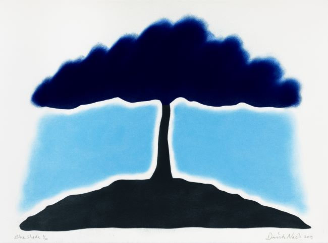 estampe Blue Shade David Nash