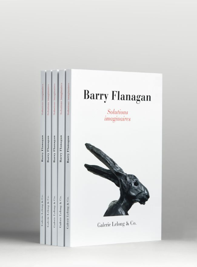 livre Solutions Imaginaires Barry Flanagan