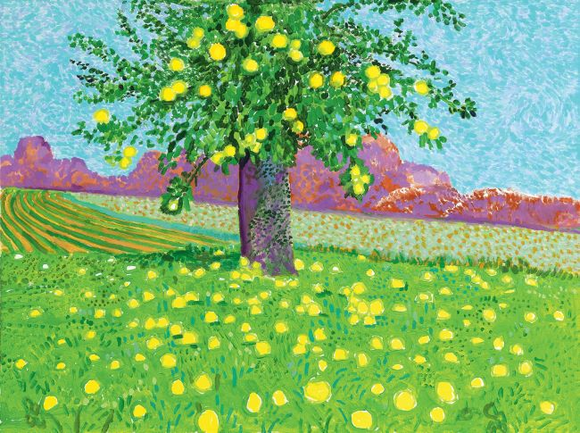 oeuvres Apples on Tree and Ground David Hockney